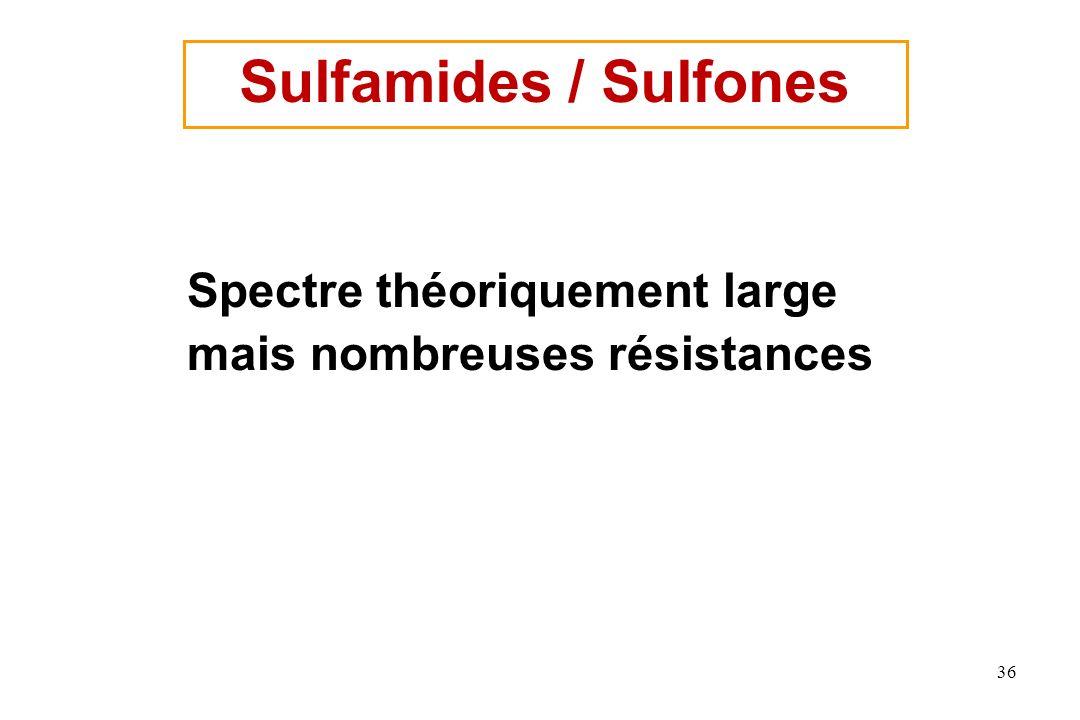 Sulfamides / Sulfones Spectre théoriquement large mais nombreuses résistances 36