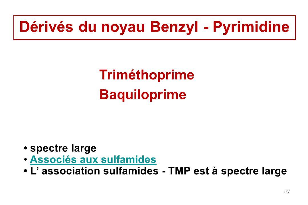 Dérivés du noyau Benzyl - Pyrimidine Triméthoprime Baquiloprime spectre large Associés aux sulfamides L association sulfamides - TMP est à spectre lar