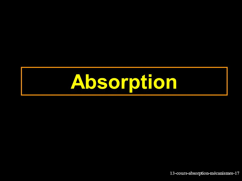 13-cours-absorption-mécanismes-17 Absorption
