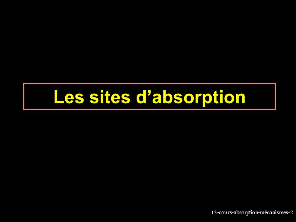 13-cours-absorption-mécanismes-2 Les sites dabsorption