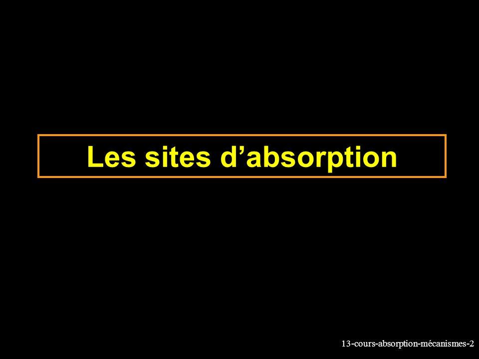 13-cours-absorption-mécanismes-3 Site dabsorption et vidange gastrique Estomac Absorption Surface Débit sang (L/min) 1 m² 0.15 200 m² 1.0 Chez les monogastriques, la partie proximale de lIG est le principal site dabsorption