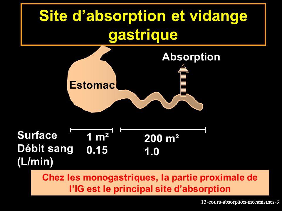 13-cours-absorption-mécanismes-64 Exemple du passage du glucose par le le symport Na+-glucose SGLT1 Lactivité du transporteur SGLT1 est déterminée par la pompe Na+/K+ ATPase localisée sur la membrane basale de l entérocyte.