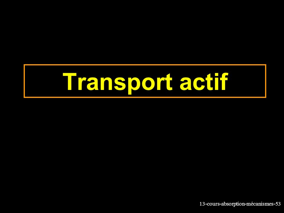 13-cours-absorption-mécanismes-53 Transport actif