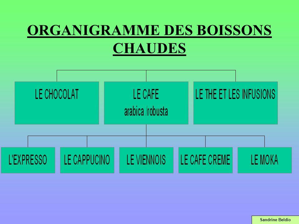 ORGANIGRAMME DES BOISSONS CHAUDES Sandrine Beldio