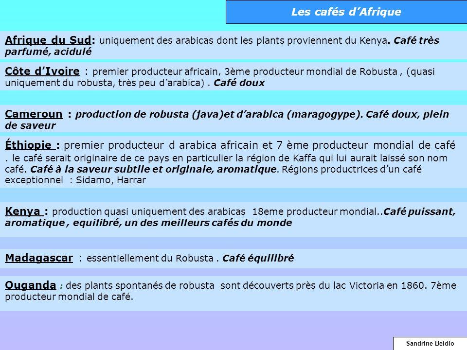 Kenya : production quasi uniquement des arabicas 18eme producteur mondial..Café puissant, aromatique, equilibré, un des meilleurs cafés du monde Ougan