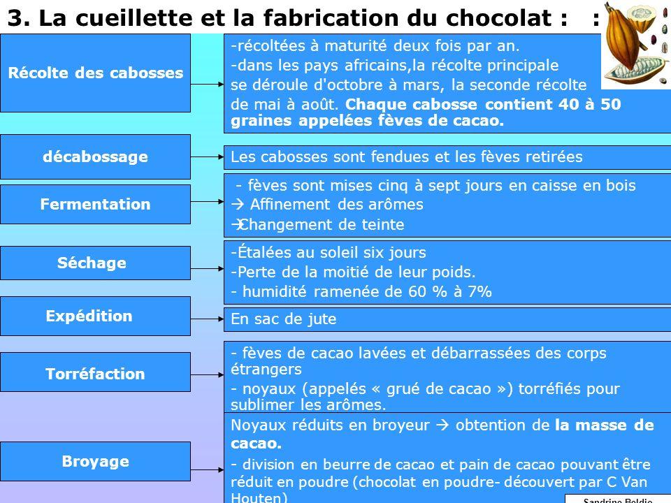 3. La cueillette et la fabrication du chocolat : : Récolte des cabosses -récoltées à maturité deux fois par an. -dans les pays africains,la récolte pr