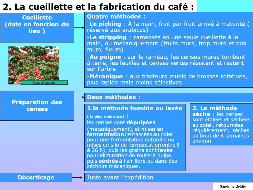 2. La cueillette et la fabrication du café : Cueillette (date en fonction du lieu ) Quatre méthodes : -Le picking : À la main, fruit par fruit arrivé