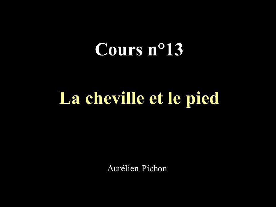 La cheville et le pied I.Généralités II. Ostéologie A.