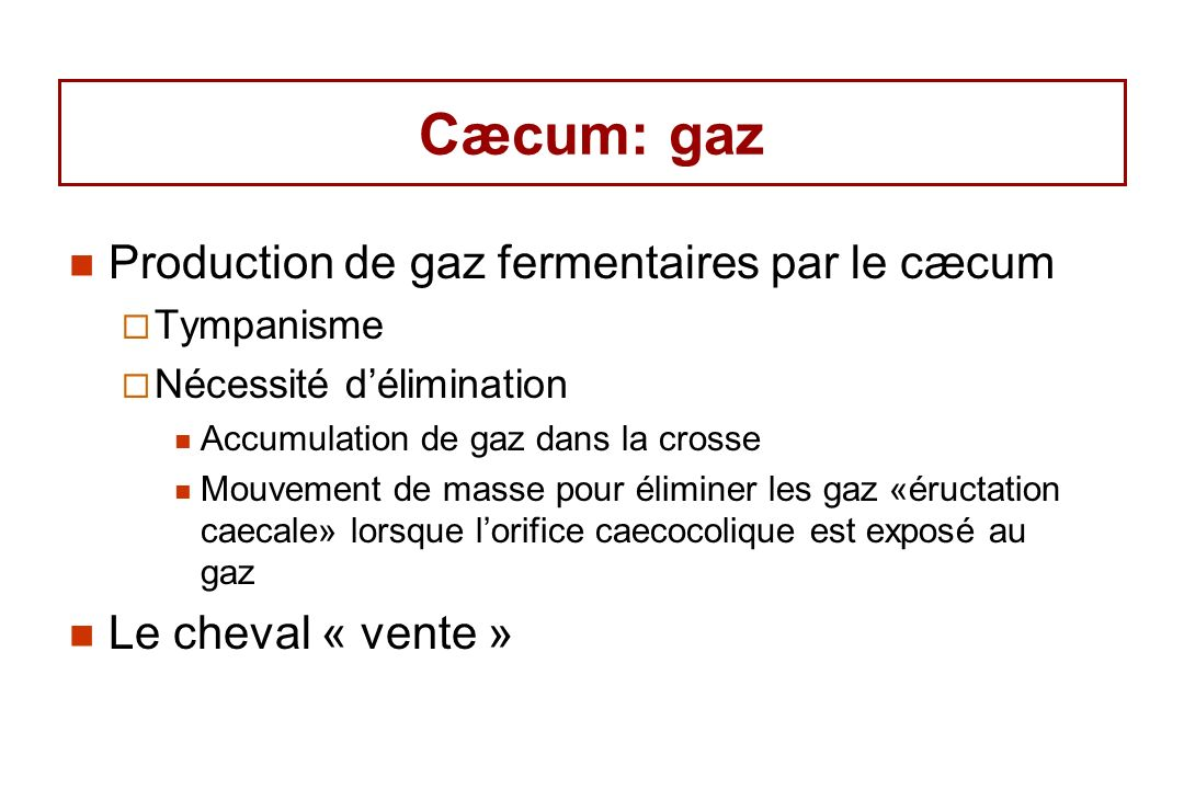 Cæcum: gaz Production de gaz fermentaires par le cæcum Tympanisme Nécessité délimination Accumulation de gaz dans la crosse Mouvement de masse pour éliminer les gaz «éructation caecale» lorsque lorifice caecocolique est exposé au gaz Le cheval « vente »