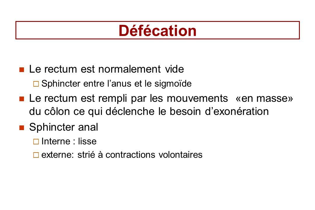 Défécation Le rectum est normalement vide Sphincter entre lanus et le sigmoïde Le rectum est rempli par les mouvements «en masse» du côlon ce qui déclenche le besoin dexonération Sphincter anal Interne : lisse externe: strié à contractions volontaires