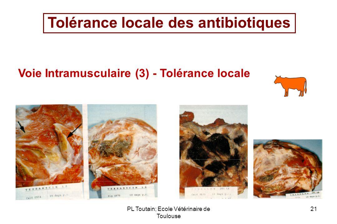 PL Toutain; Ecole Vétérinaire de Toulouse 21 Tolérance locale des antibiotiques Voie Intramusculaire (3) - Tolérance locale