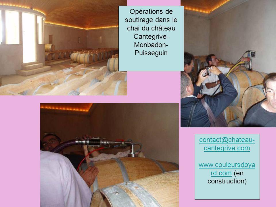 Opérations de soutirage dans le chai du château Cantegrive- Monbadon- Puisseguin contact@chateau- cantegrive.com www.couleursdoya rd.comwww.couleursdoya rd.com (en construction)