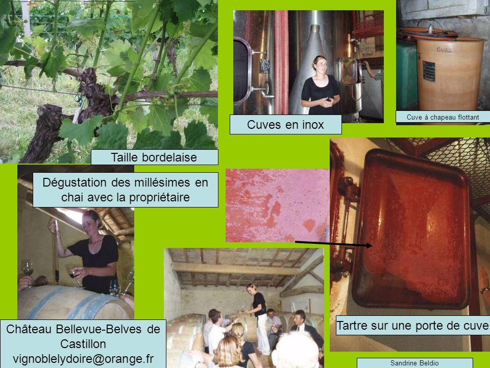 Château Bellevue-Belves de Castillon vignoblelydoire@orange.fr Tartre sur une porte de cuve Taille bordelaise Dégustation des millésimes en chai avec la propriétaire Cuves en inox Cuve à chapeau flottant Sandrine Beldio