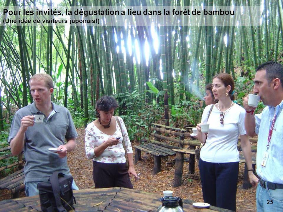 25 Pour les invités, la dégustation a lieu dans la forêt de bambou (Une idée de visiteurs japonais!)
