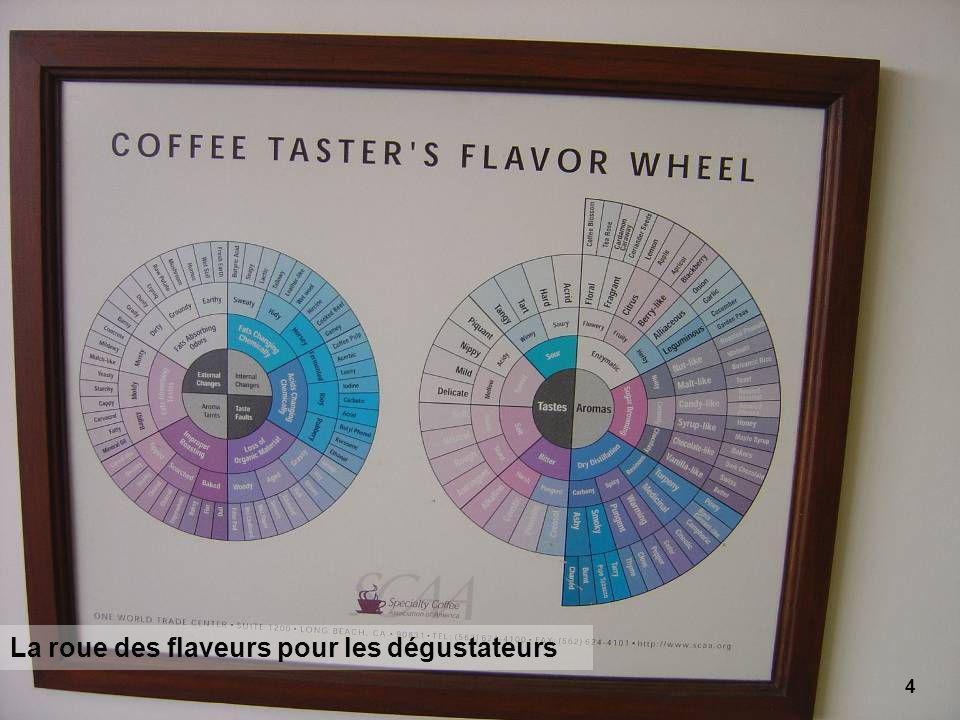 4 La roue des flaveurs pour les dégustateurs