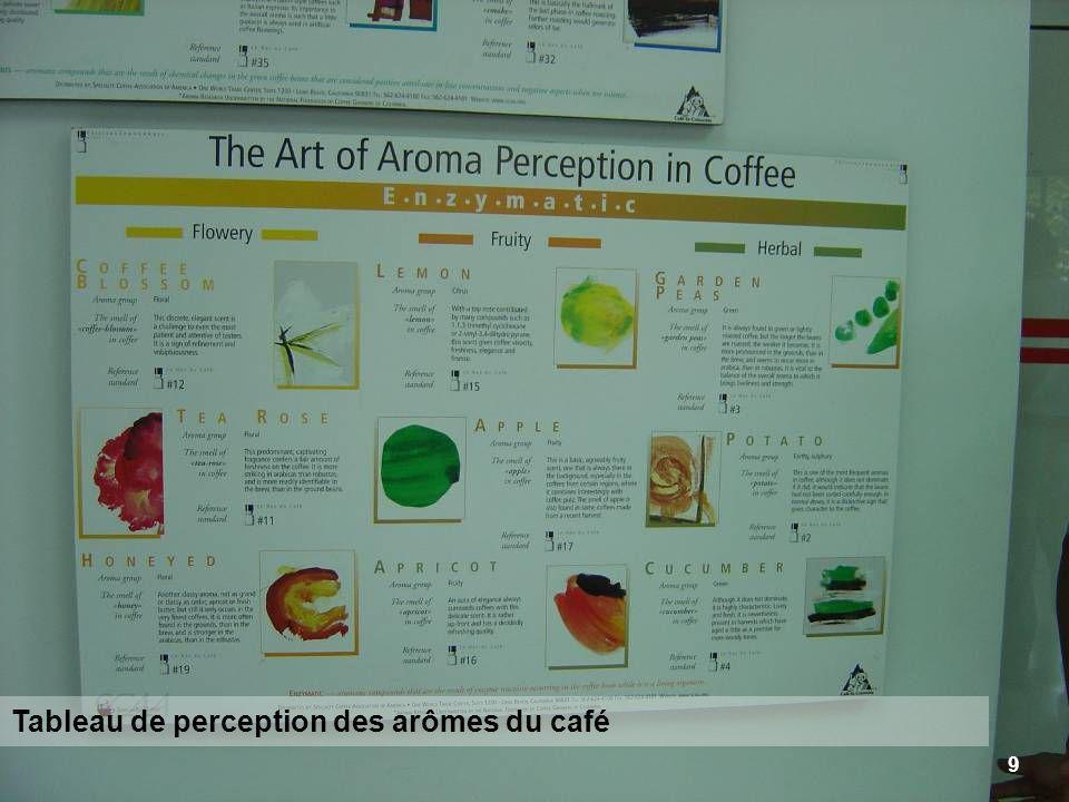 9 Tableau de perception des arômes du café