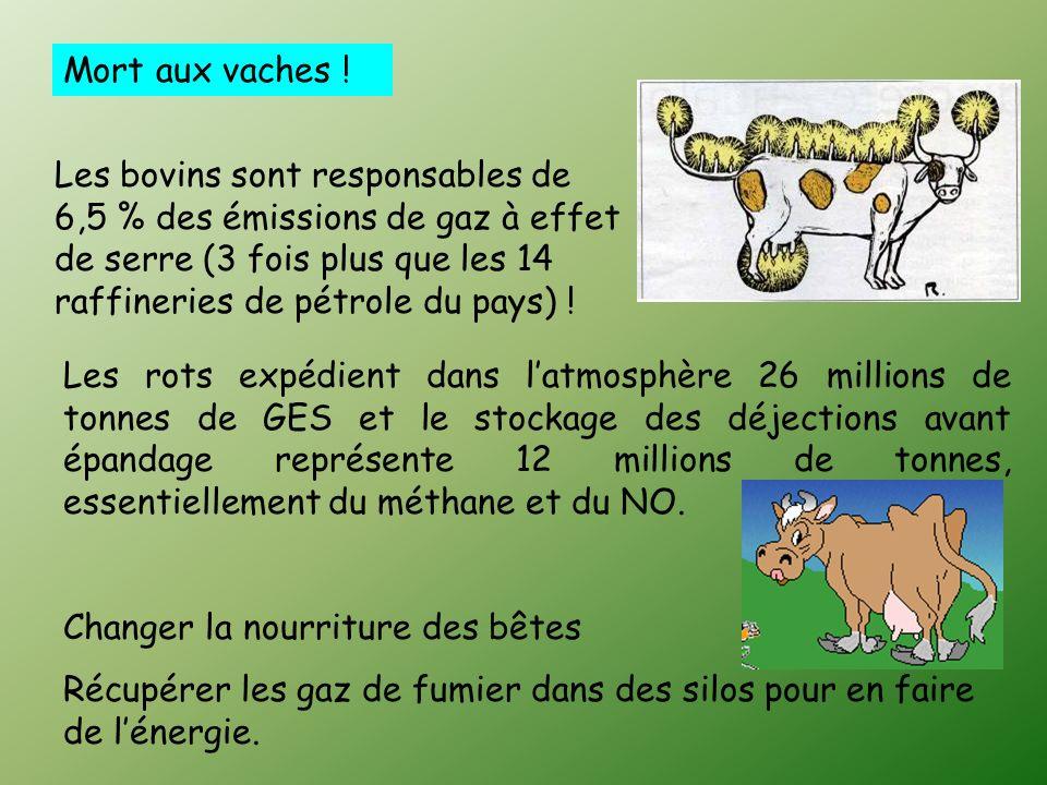 Mort aux vaches .