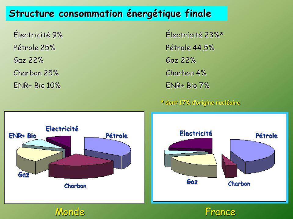 MondeFrance Structure consommation énergétique finale Charbon 4% * dont 17% dorigine nucléaire Pétrole 25% Charbon 25% Gaz 22% Charbon 4% Pétrole 44,5% Gaz 22% Électricité 23%* Électricité 9% ENR+ Bio 7% ENR+ Bio 10% Charbon Pétrole Gaz Electricité Pétrole Charbon Gaz Electricité ENR+ Bio