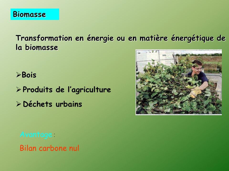 Biomasse Transformation en énergie ou en matière énergétique de la biomasse Bois Produits de lagriculture Déchets urbains Avantage : Bilan carbone nul