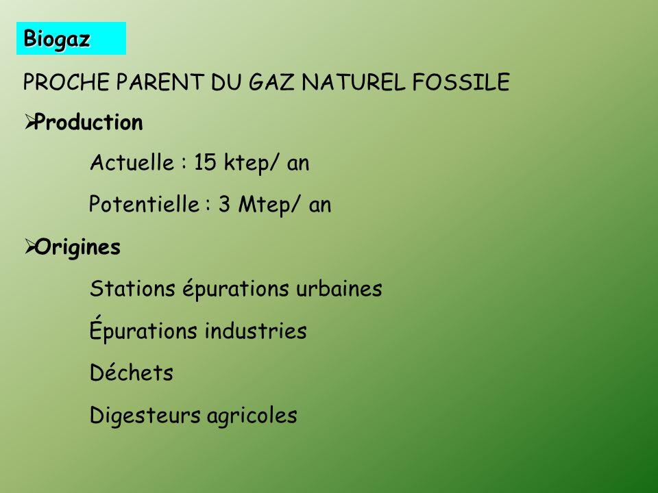 Biogaz PROCHE PARENT DU GAZ NATUREL FOSSILE Production Actuelle : 15 ktep/ an Potentielle : 3 Mtep/ an Origines Stations épurations urbaines Épurations industries Déchets Digesteurs agricoles