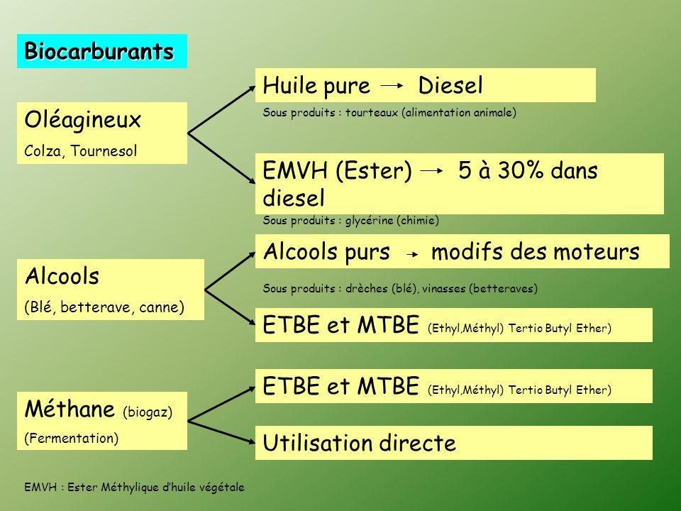 Biocarburants Oléagineux Colza, Tournesol Alcools (Blé, betterave, canne) Méthane (biogaz) (Fermentation) Huile pure Diesel EMVH (Ester) 5 à 30% dans diesel Alcools purs modifs des moteurs ETBE et MTBE (Ethyl,Méthyl) Tertio Butyl Ether) Sous produits : tourteaux (alimentation animale) Sous produits : glycérine (chimie) ETBE et MTBE (Ethyl,Méthyl) Tertio Butyl Ether) Utilisation directe EMVH : Ester Méthylique dhuile végétale Sous produits : drèches (blé), vinasses (betteraves)