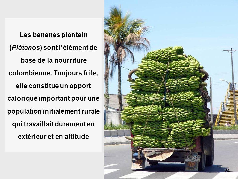 24 Les bananes plantain (Plátanos) sont lélément de base de la nourriture colombienne.