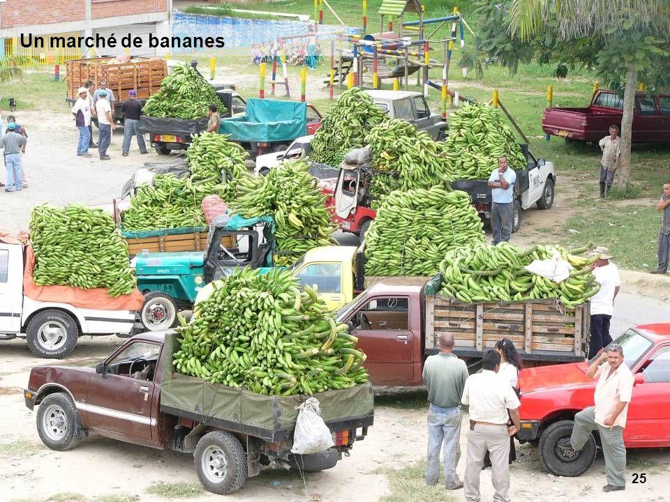 25 Un marché de bananes