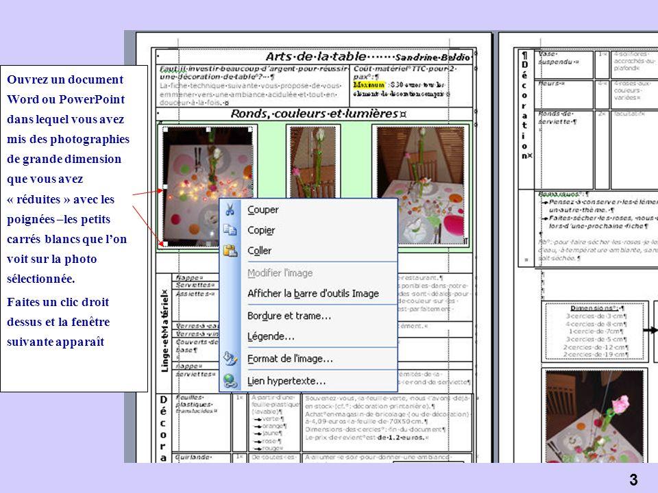 3 Ouvrez un document Word ou PowerPoint dans lequel vous avez mis des photographies de grande dimension que vous avez « réduites » avec les poignées –les petits carrés blancs que lon voit sur la photo sélectionnée.