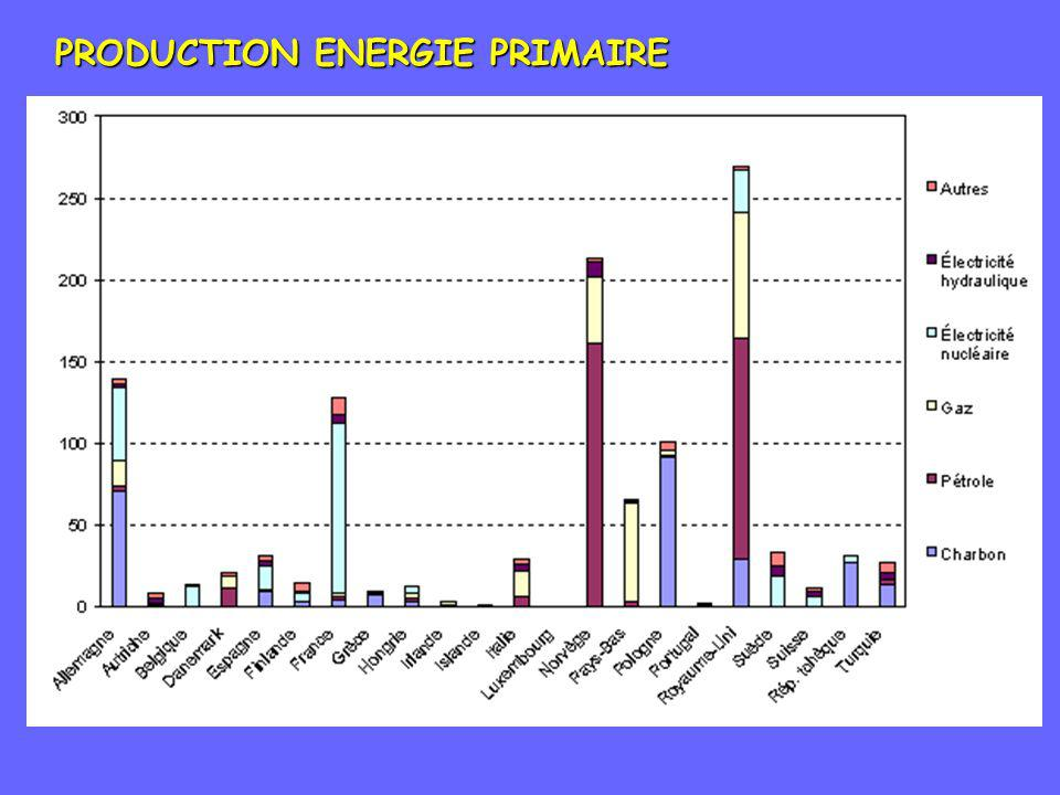 PRODUCTION ENERGIE PRIMAIRE