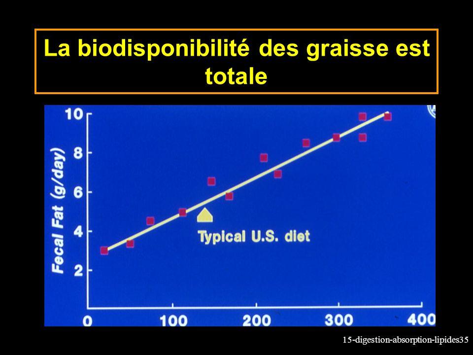 15-digestion-absorption-lipides35 La biodisponibilité des graisse est totale