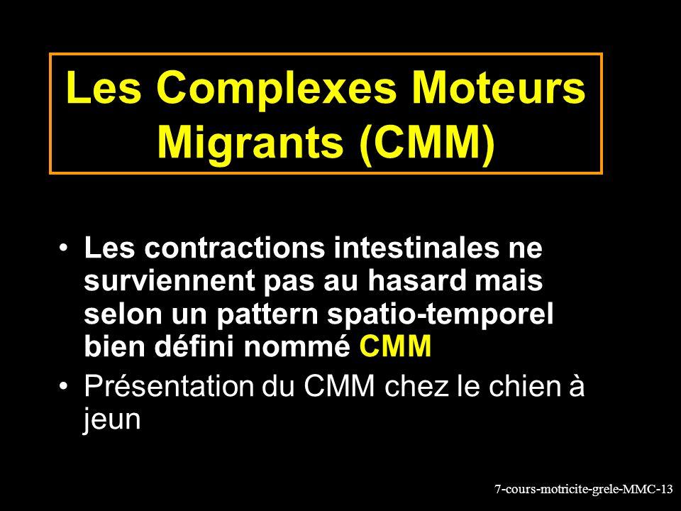7-cours-motricite-grele-MMC-13 Les Complexes Moteurs Migrants (CMM) Les contractions intestinales ne surviennent pas au hasard mais selon un pattern spatio-temporel bien défini nommé CMM Présentation du CMM chez le chien à jeun