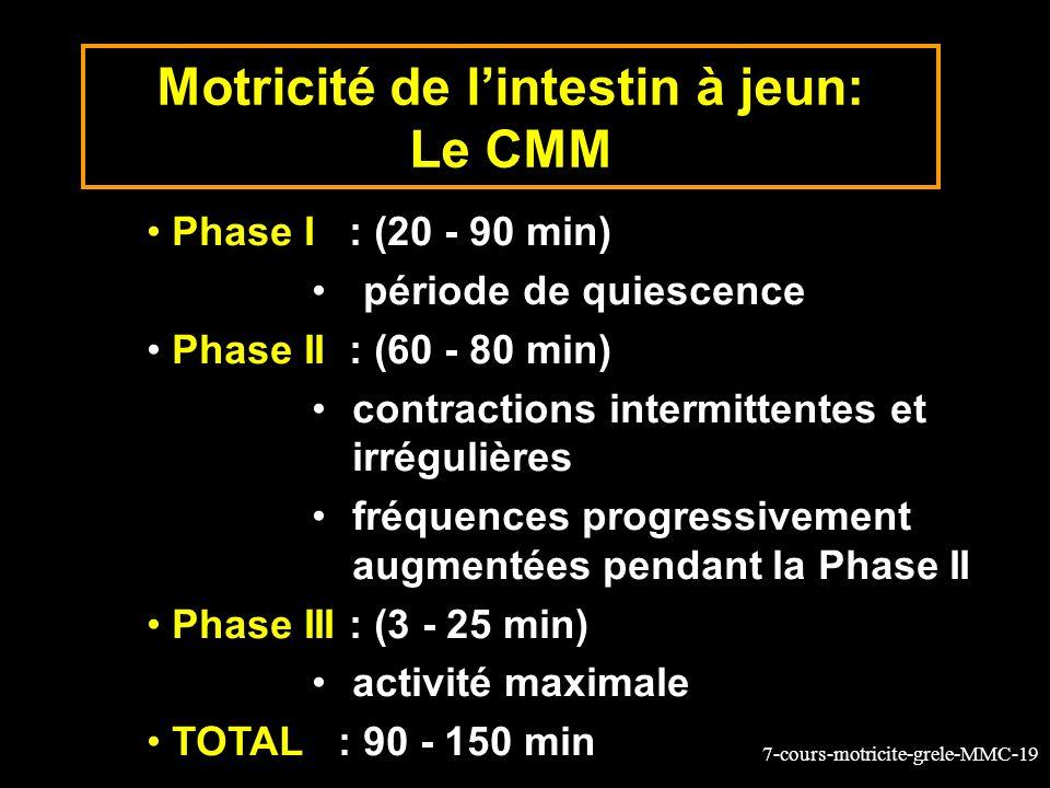 7-cours-motricite-grele-MMC-19 Motricité de lintestin à jeun: Le CMM Phase I : (20 - 90 min) période de quiescence Phase II : (60 - 80 min) contractions intermittentes et irrégulières fréquences progressivement augmentées pendant la Phase II Phase III : (3 - 25 min) activité maximale TOTAL : 90 - 150 min
