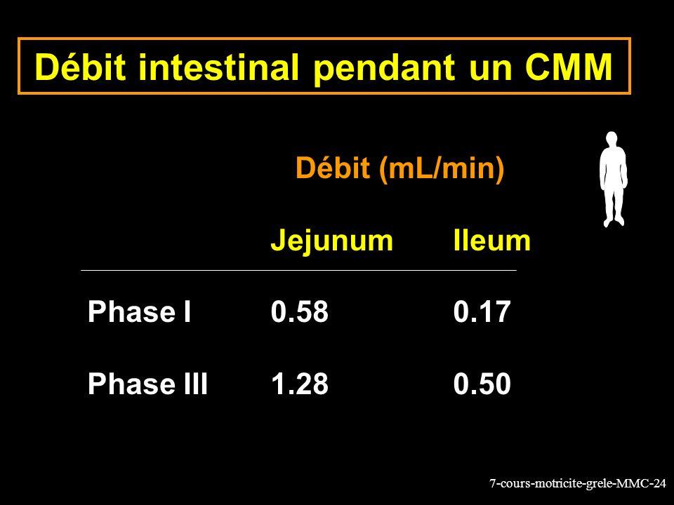 7-cours-motricite-grele-MMC-24 Débit intestinal pendant un CMM Débit (mL/min) JejunumIleum Phase I0.580.17 Phase III1.280.50