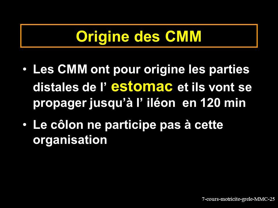 7-cours-motricite-grele-MMC-25 Origine des CMM Les CMM ont pour origine les parties distales de l estomac et ils vont se propager jusquà l iléon en 12