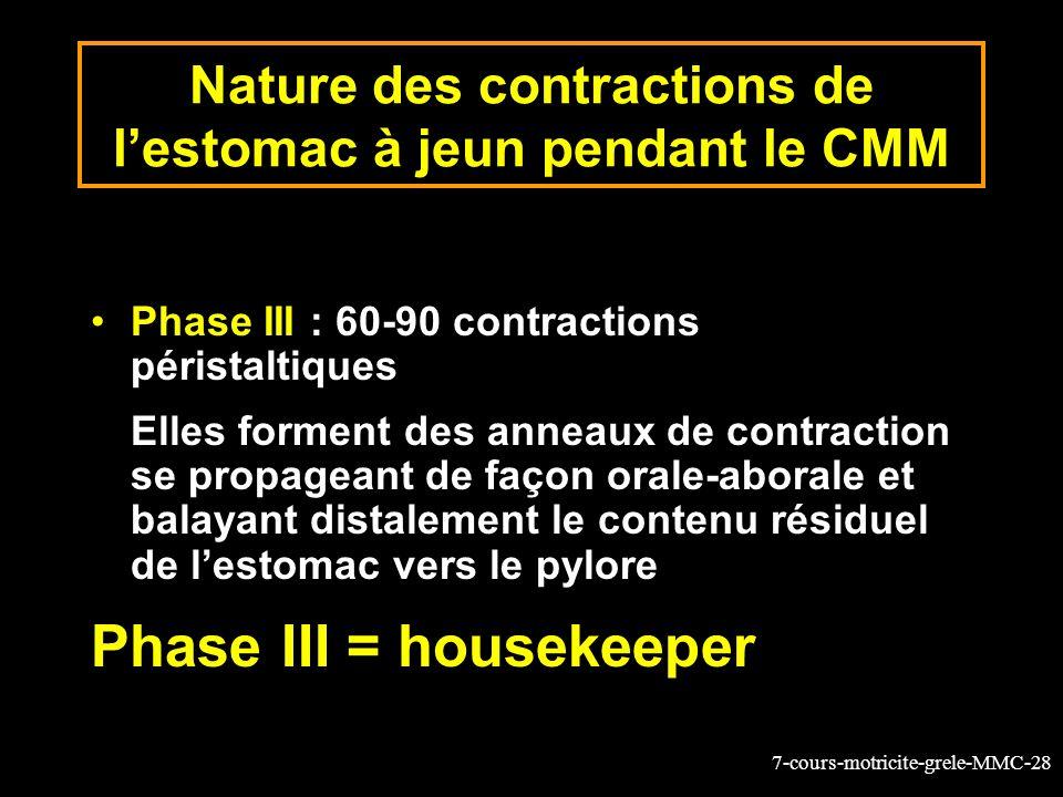 7-cours-motricite-grele-MMC-28 Nature des contractions de lestomac à jeun pendant le CMM Phase III : 60-90 contractions péristaltiques Elles forment d