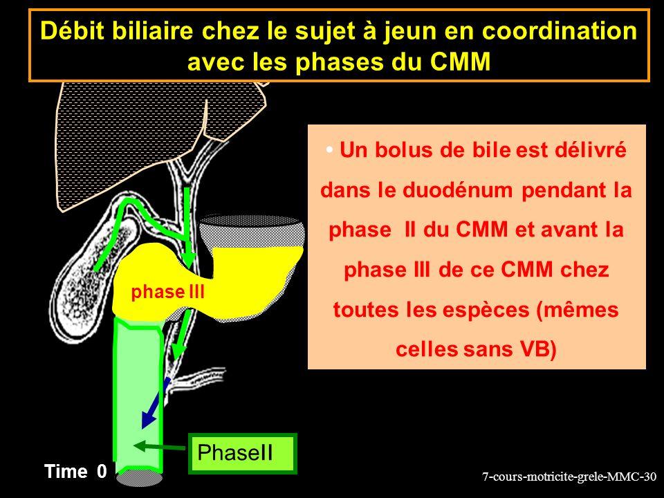 7-cours-motricite-grele-MMC-30 Un bolus de bile est délivré dans le duodénum pendant la phase II du CMM et avant la phase III de ce CMM chez toutes le