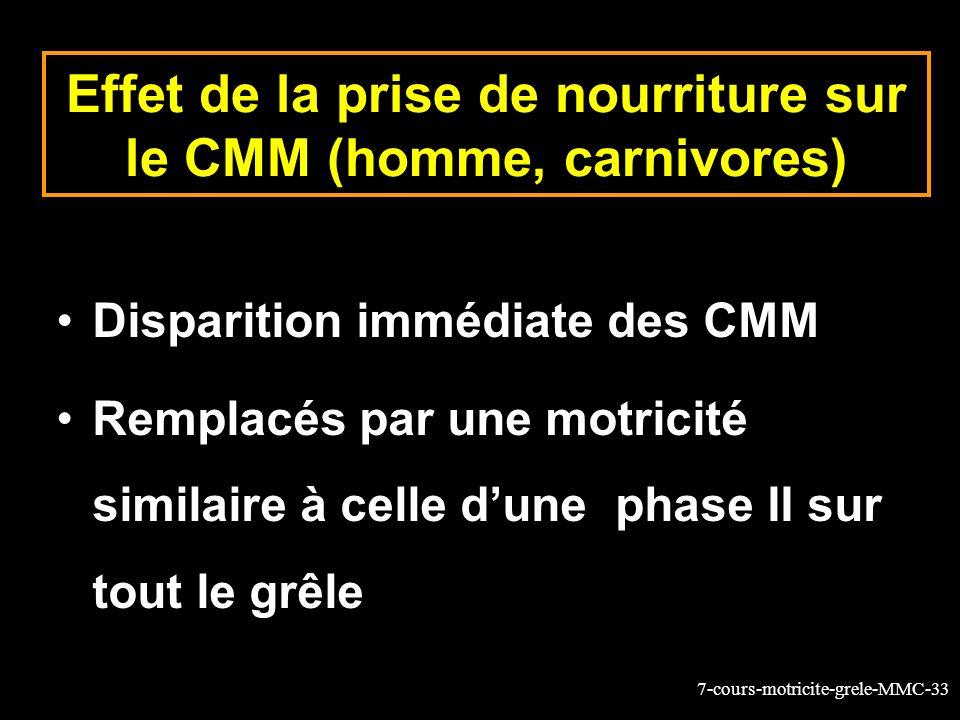 7-cours-motricite-grele-MMC-33 Effet de la prise de nourriture sur le CMM (homme, carnivores) Disparition immédiate des CMM Remplacés par une motricité similaire à celle dune phase II sur tout le grêle