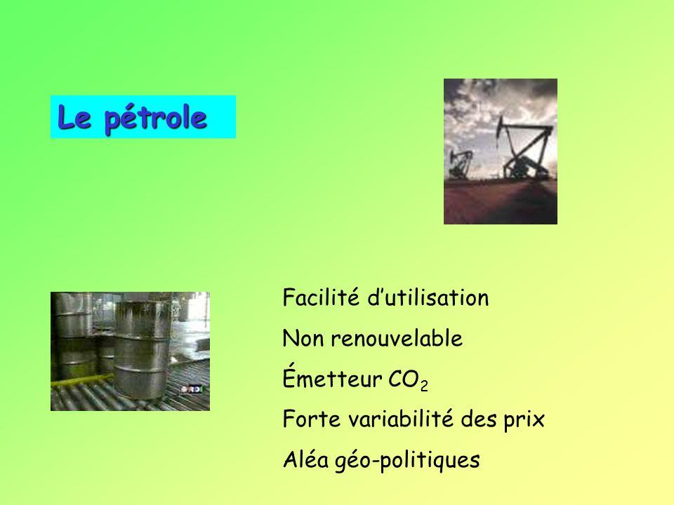 Quelles énergies face à ces contraintes environnementales ?