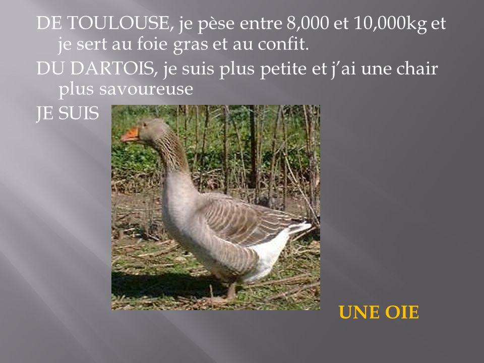 DE TOULOUSE, je pèse entre 8,000 et 10,000kg et je sert au foie gras et au confit. DU DARTOIS, je suis plus petite et jai une chair plus savoureuse JE