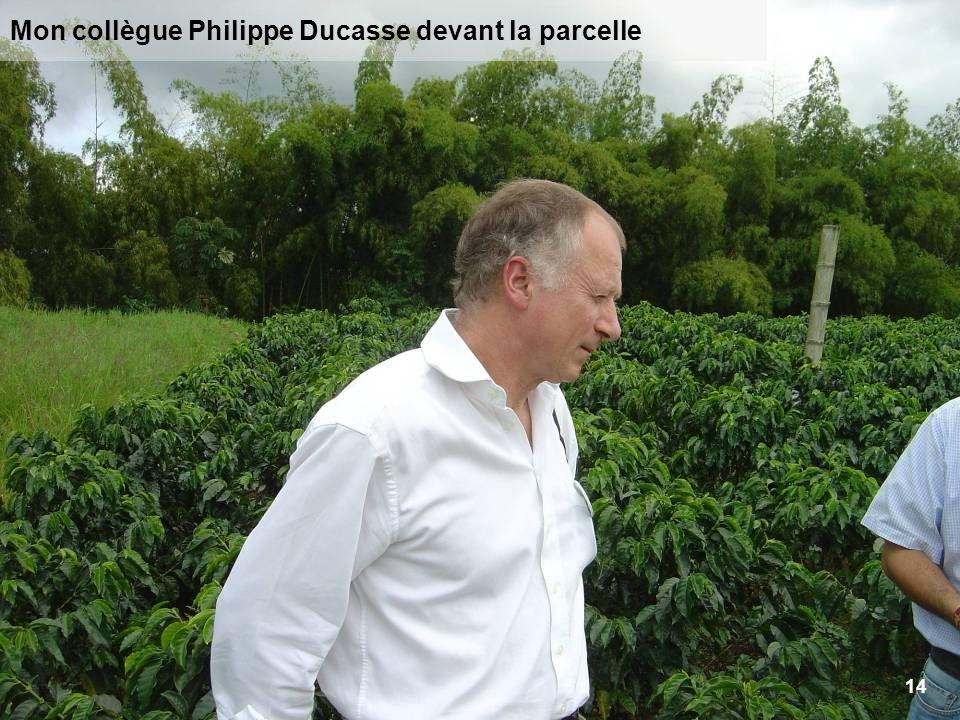 14 Mon collègue Philippe Ducasse devant la parcelle