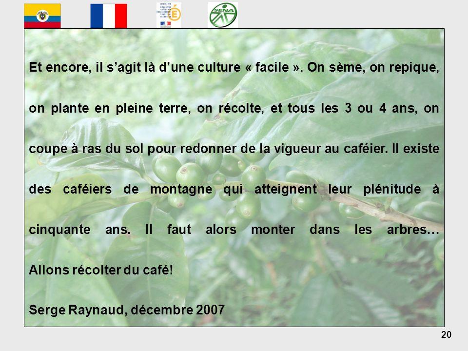 20 Serge Raynaud, décembre 2007 Et encore, il sagit là dune culture « facile ». On sème, on repique, on plante en pleine terre, on récolte, et tous le