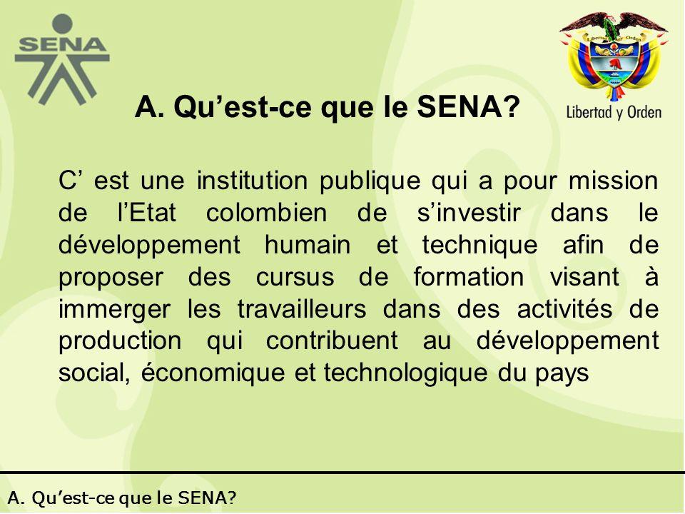 SENA Virtuel 2002 - 2006.