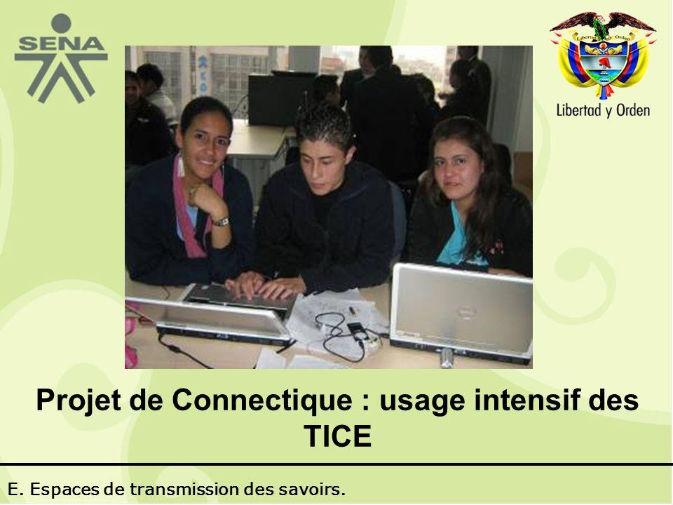 Projet de Connectique : usage intensif des TICE E. Espaces de transmission des savoirs.