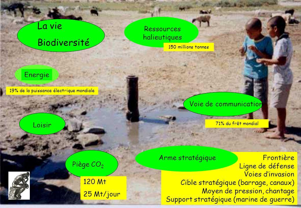 La vie Biodiversité Frontière Ligne de défense Voies dinvasion Cible stratégique (barrage, canaux) Moyen de pression, chantage Support stratégique (ma