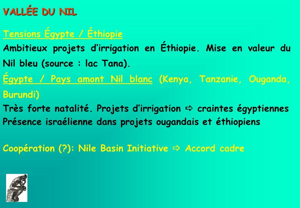 VALLÉE DU NIL Tensions Égypte / Éthiopie Ambitieux projets dirrigation en Éthiopie. Mise en valeur du Nil bleu (source : lac Tana). Égypte / Pays amon