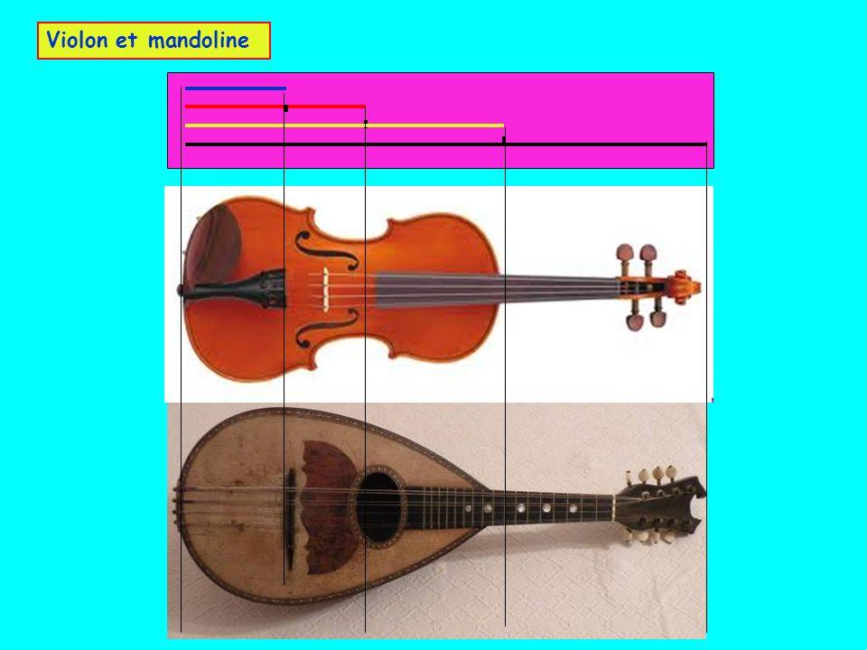 Violon et mandoline