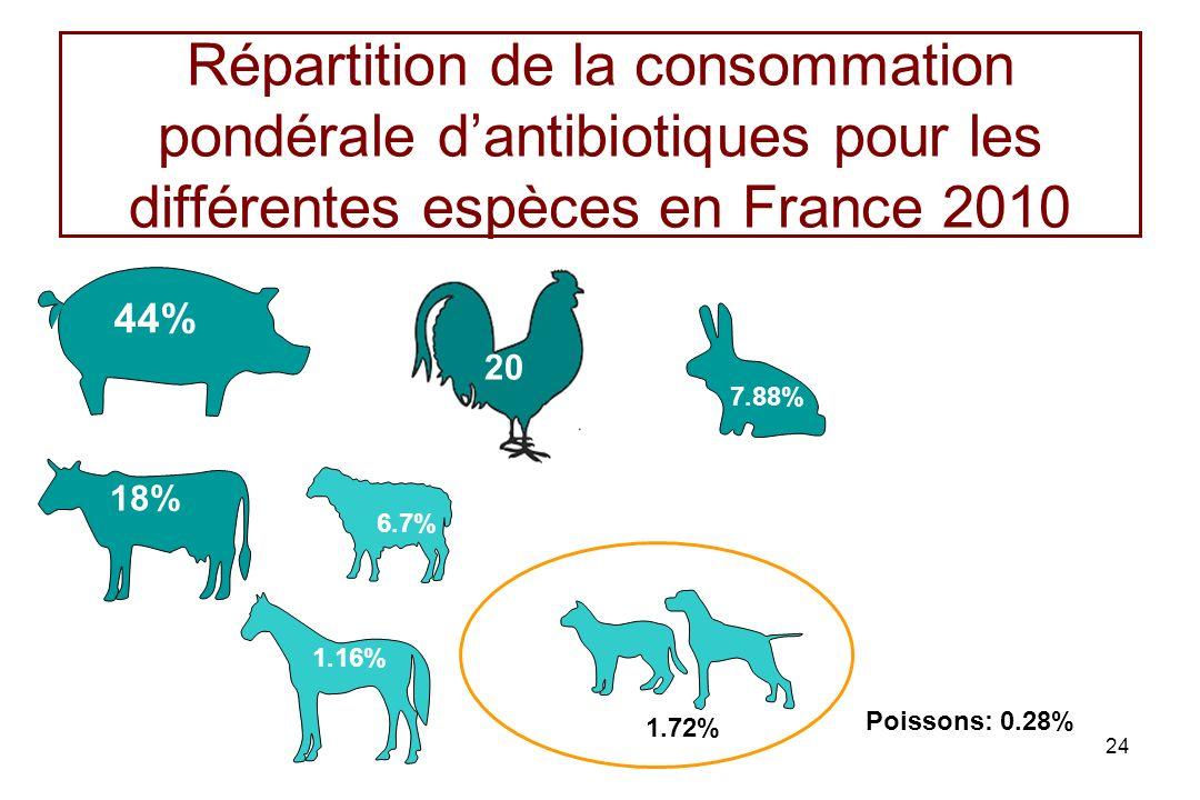 24 Répartition de la consommation pondérale dantibiotiques pour les différentes espèces en France 2010 44% 18% 7.88% 1.72% 1.16% 20 6.7% Poissons: 0.2