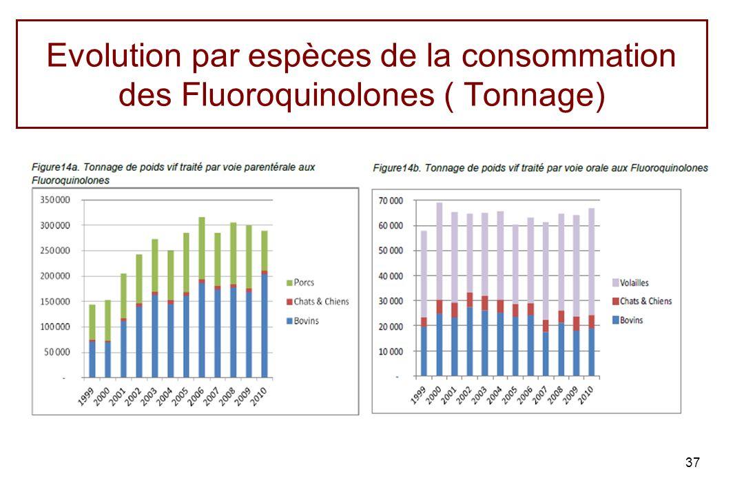 Evolution par espèces de la consommation des Fluoroquinolones ( Tonnage) 37