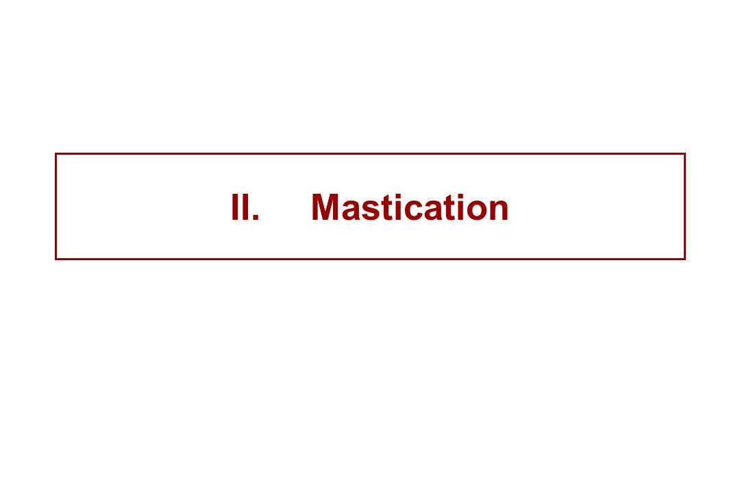II.Mastication