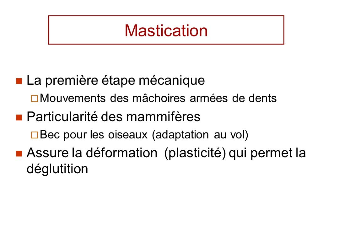 Mastication La première étape mécanique Mouvements des mâchoires armées de dents Particularité des mammifères Bec pour les oiseaux (adaptation au vol)